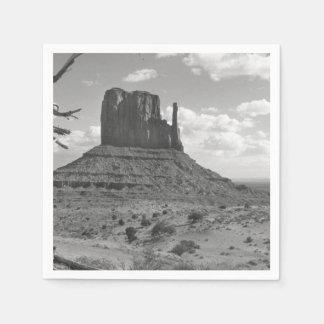 B&W Monument-Tal in Arizona/in Utah 4 Serviette