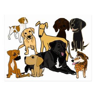 BA fantastische Welpen-Hundepostkarte Postkarte
