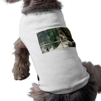Baby-Affe Shirt