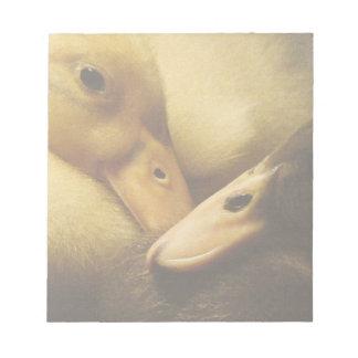 Baby Ancona duckt Entlein-Tiere Notizblock