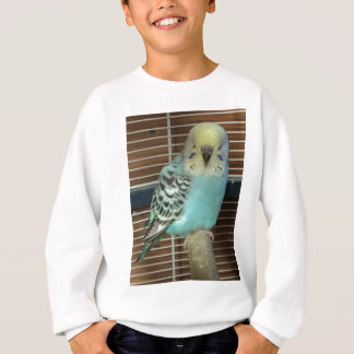 Baby budgie sweatshirt