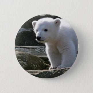Baby-Eisbär-Knopf Runder Button 5,1 Cm
