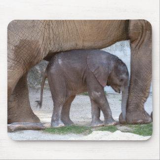 Baby-Elefant Mauspads