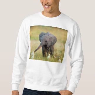 Baby-Elefant und Vögel Sweatshirt