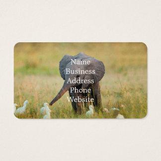 Baby-Elefant und Vögel Visitenkarten