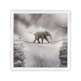 Baby-Elefant-Wege das Drahtseil Acryl Tablett