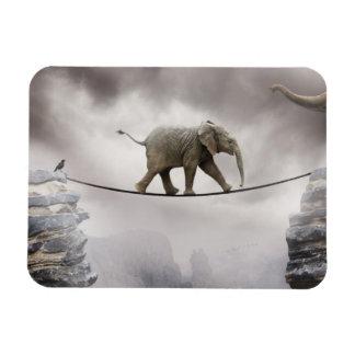 Baby-Elefant-Wege das Drahtseil Magnet