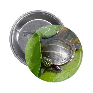 Baby gemalte Schildkröte auf Lilypad Einzelteilen Runder Button 5,7 Cm