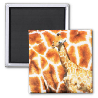 Baby-Giraffe Quadratischer Magnet