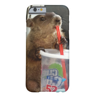 Baby Groundhog Moses iPhone 6 Fall Barely There iPhone 6 Hülle