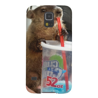 Baby Groundhog Moses Samsung Kasten Galaxie-S5 Samsung S5 Cover