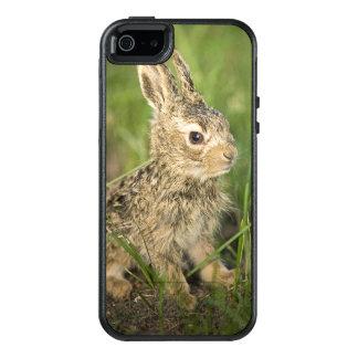 Baby-Häschen im Gras OtterBox iPhone 5/5s/SE Hülle