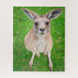 Baby-Känguru Getty Bild-| Puzzle