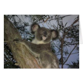 Baby-Koala-Karte Karte