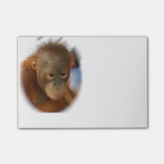 Baby-Orang-Utan Post-it Klebezettel