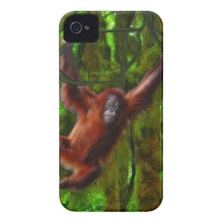 Baby-Orang-Utan u. Regenwald-Primat-Gerät-Fall iPhone 4 Cover
