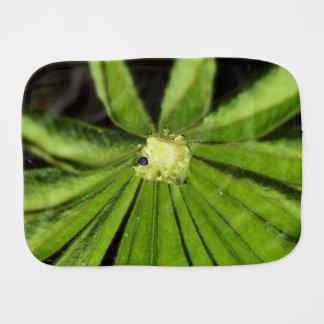 Baby-Palmen-Pflanze durch Shirley Taylor Spucktuch
