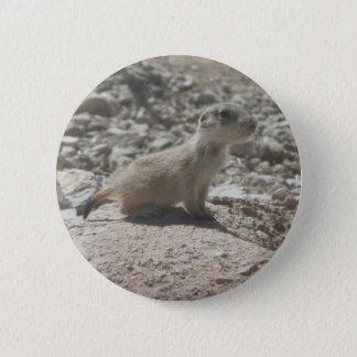 Baby-Präriehund Runder Button 5,1 Cm