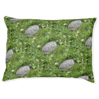 Baby-rote ohrige Schieber-Schildkröte Haustierbett