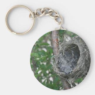 Baby-Rotkehlchen im Nest Schlüsselanhänger