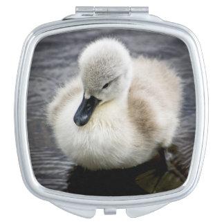 Baby-Schwan| Cygnet Taschenspiegel