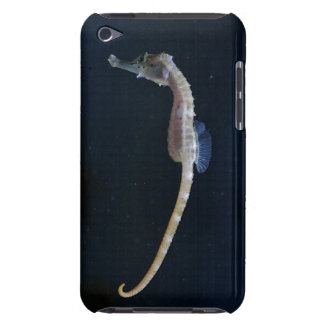 Baby-Seepferdipod-Touch-Fall Case-Mate iPod Touch Hülle