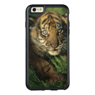 Baby Sumatran Tiger OtterBox iPhone 6/6s Plus Hülle