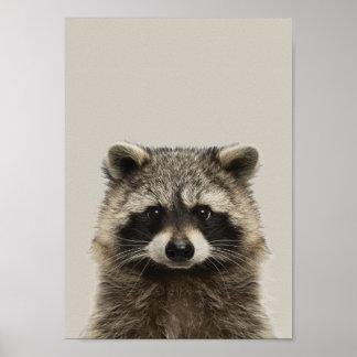 Baby-Tier-Kinderzimmer-Plakat - Racoon Poster