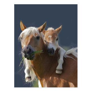 Baby-Umarmungen Postkarte