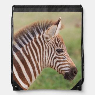 Baby Zebrakopf, Tansania Sportbeutel