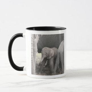 Babyelefant ist stehend und wobbly tasse