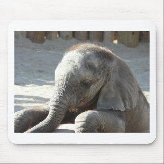 Babyelefant Mousepad
