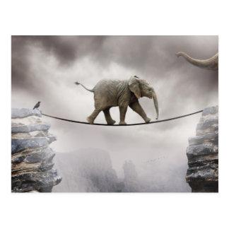 Babyelefant-Weg-Drahtseil über großer Schlucht Postkarten
