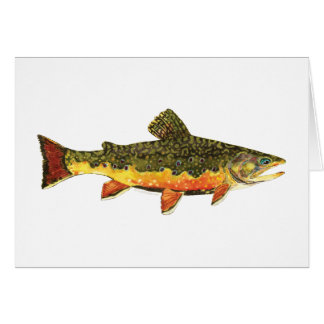 Bachforelle-Fisch-Malerei Grußkarte