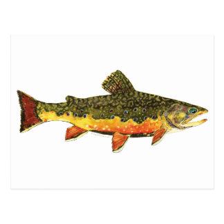 Bachforelle-Fisch-Malerei Postkarte