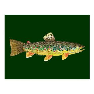 Bachforelle-Fischen Postkarte