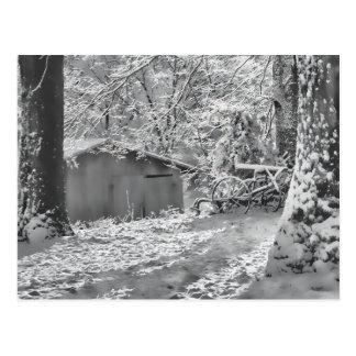 Backlit ländliche Schnee-Schwarzweiss-Szene Postkarte