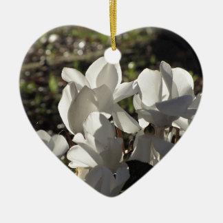 Backlits weiße Cyclamen-Blumen auf dunklem Keramik Ornament