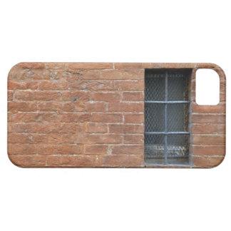 Backsteinmauer mit einem typischen Muster Die Wan Schutzhülle Fürs iPhone 5