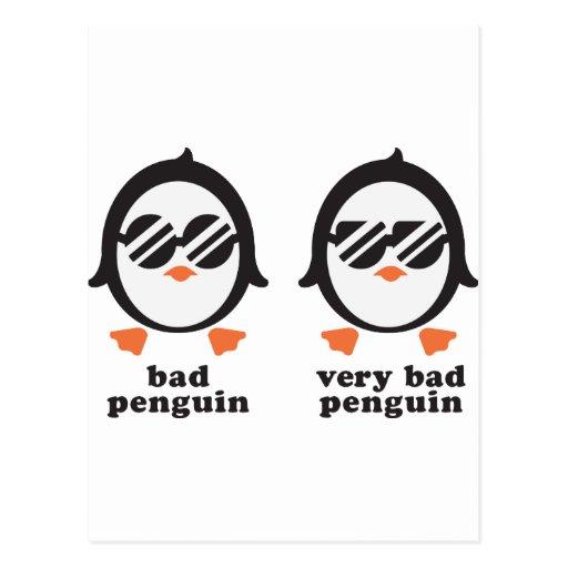 bad penguin - Pinguin Postkarten