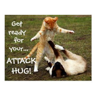Badass Katzen - Angriffsumarmung Postkarte