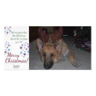 Bah Humbug-Weihnachtskarten-Schäferhund lustig Individuelle Photo Karte