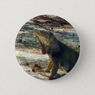 Bahama Leguan-Knopf Runder Button 5,7 Cm