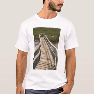 BAHAMAS, großartige Bahama Insel, Ostseite: T-Shirt
