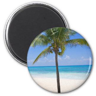 Bahamas-Palme Magnets