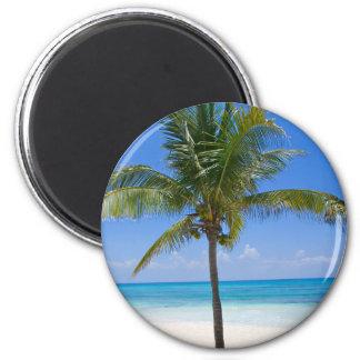 Bahamas-Palme Runder Magnet 5,7 Cm