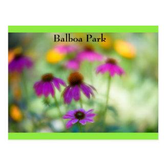 Balboa-Park Postkarte
