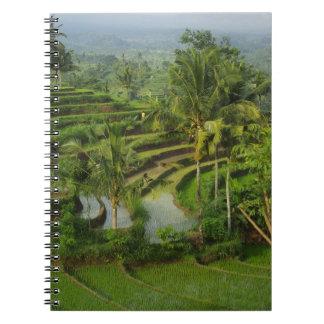 Bali - junge Terrassericefields und -palmen Spiral Notizblock