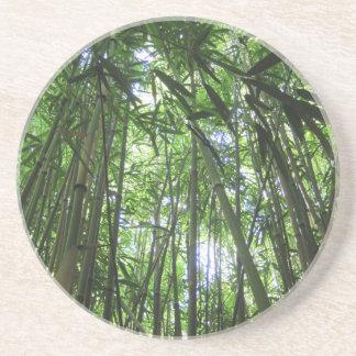 Bambustropische Dschungel-Bäume waldmauis Hawaii Untersetzer