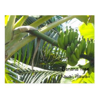 Bananen-Baum Postkarte
